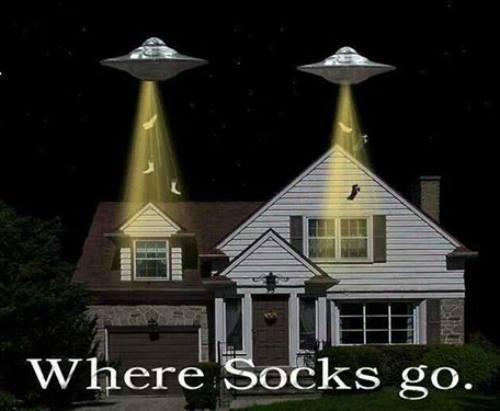 Where Socks Go
