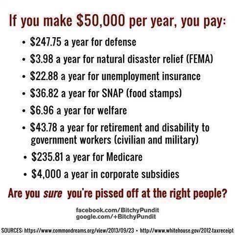 Where Your Taxes Go