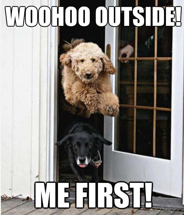 WooHoo Outside