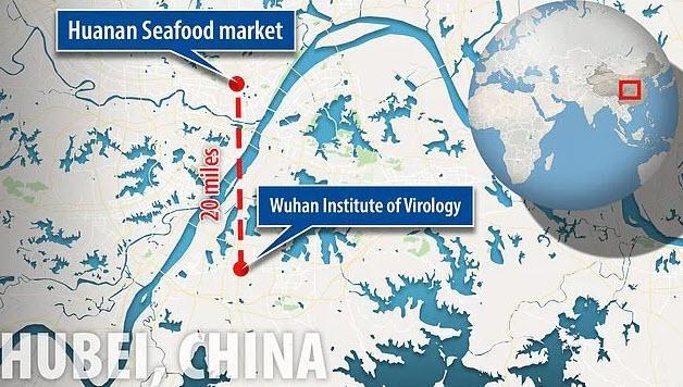Wuhan Virology
