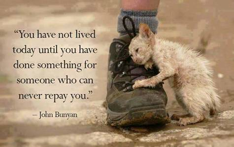 You Have Not Lived