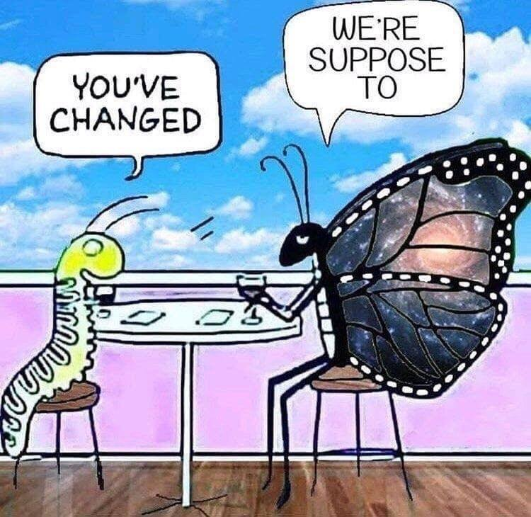 You Have Changed