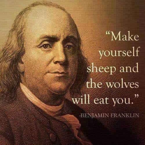 Make Yourself Sheep