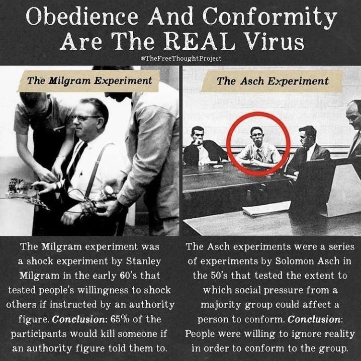Milgram And Asch Experiments