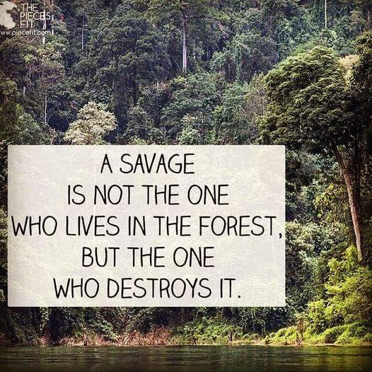 Savages Destroy Forests