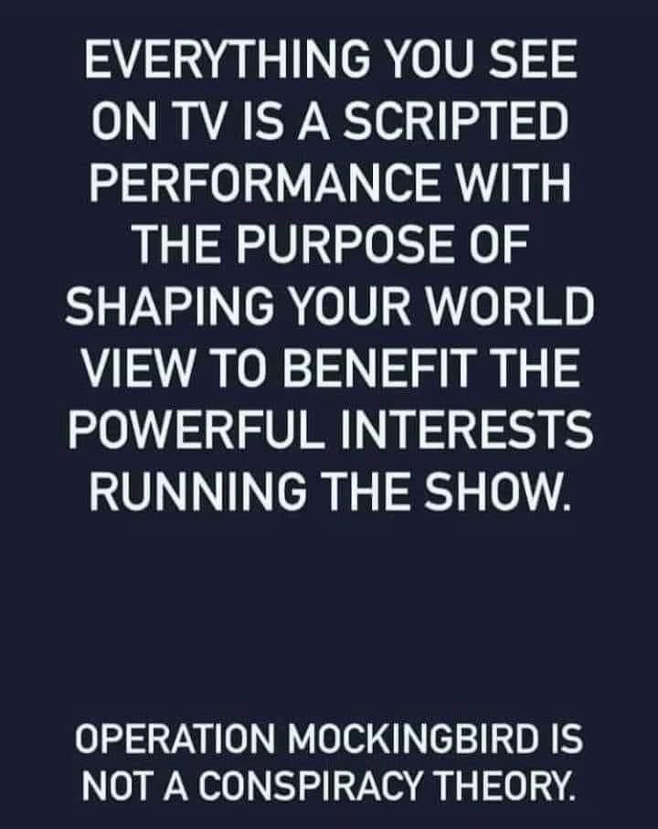 Scripted TV